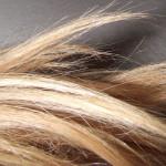 Meu cabelo tá um bagaço! cauterização nele