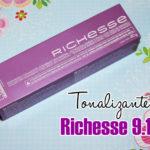 Matizando cabelo com Richesse 9.13